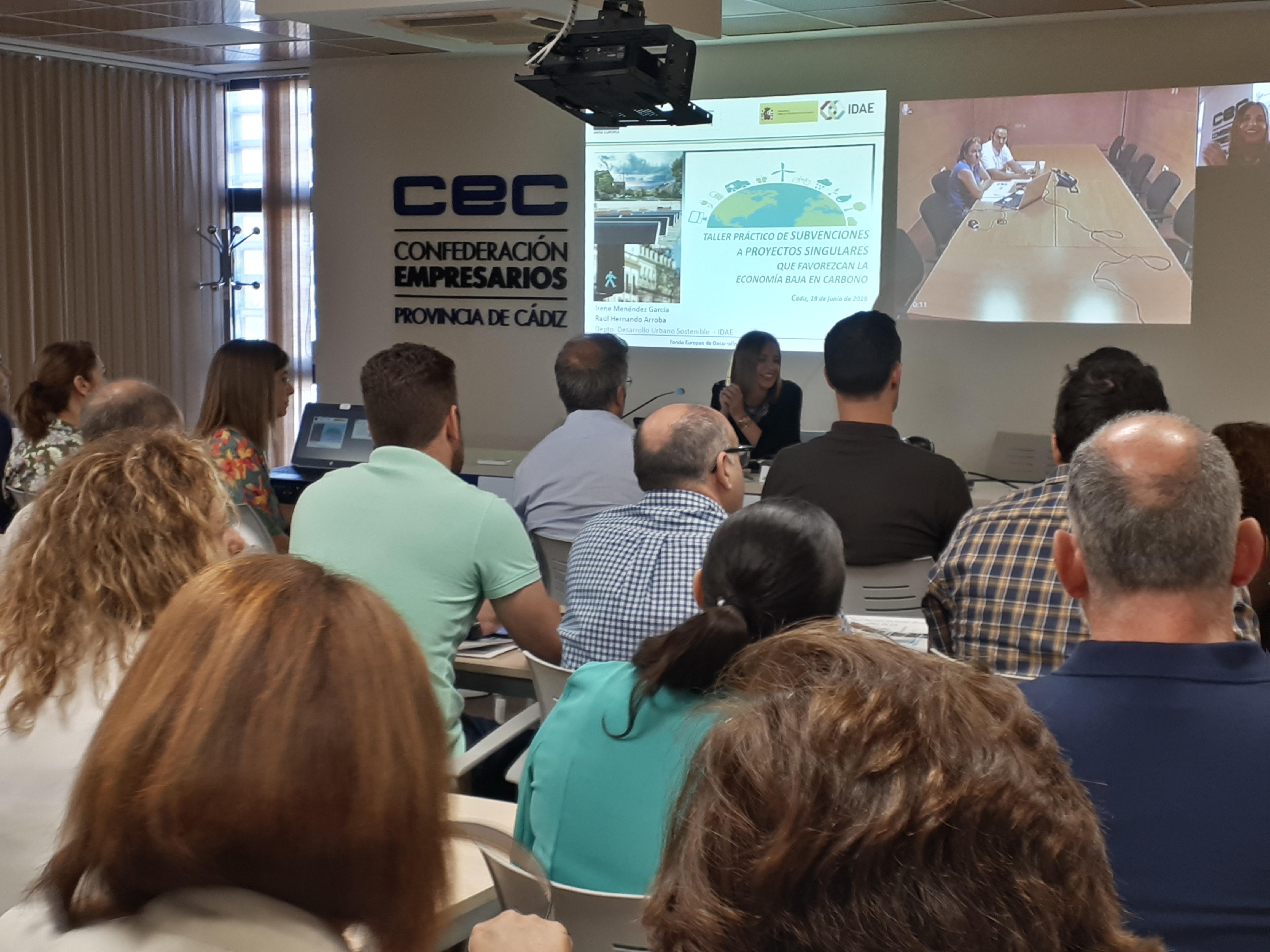 Intervención mediante videoconferencia de Irene Menéndez García yRaúl Hernando (IDAE)