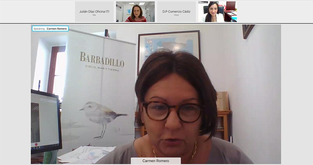 """Intervención de Carmen Romero (Bodegas Barbadillo). Jornada Online """"Productos y Servicios del ICEX para la Internacionalización de Empresas Gaditanas"""""""