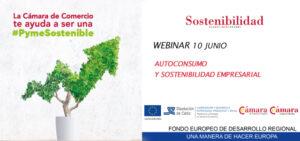 """Webinar: """"Autoconsumo y sostenibilidad empresarial"""". @ Plataforma online: ZOOM"""
